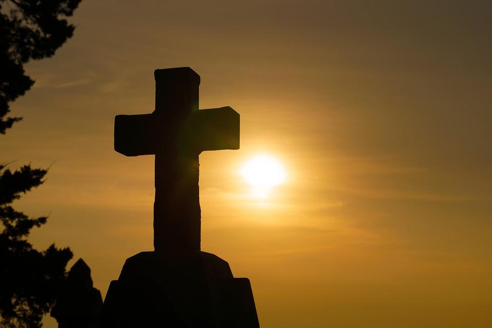 W krzyżu siła